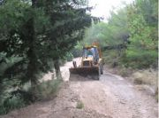 Maintenance of forest roads