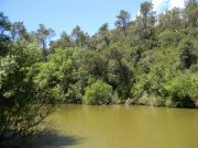 Η τεχνητή λίμνη στο φράγμα του Can Borrell