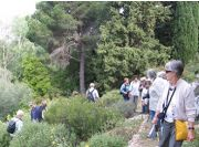Guided visits in the educational botanical path